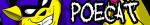 Poecat